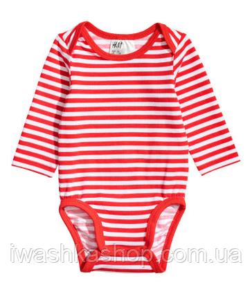 Боди с длинными рукавами в полоску для девочки 4 - 6 месяцев, р. 68, H&M