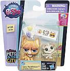 Набор Littlest Pet Shop зверюшки Sulky MacWhiskers and Chenille Chilla. Оригинал Hasbro B5689/A7313, фото 2