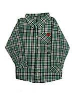 Рубашка Grain de ble 74см Белый, Светло-зеленый