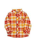Рубашка Grain de ble 59см Оранжевый
