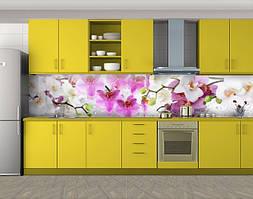 Кухонный фартук Цветущие орхидеи, Скинали с фотоизображением на самоклеящейся пленке, Цветы, розовый