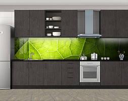 Кухонный фартук Листок на свету, Наклейка на кухонный фартук, Текстуры, фоны, зеленый