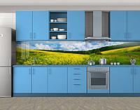 Кухонный фартук Поле желтых цветов и голубое небо, Пленка самоклеящаяся для скинали, Природа, желтый, фото 1