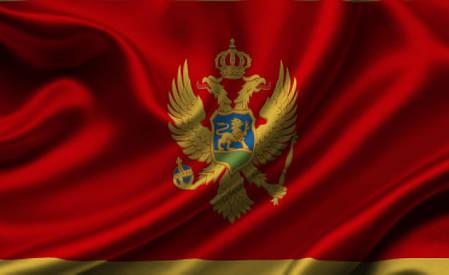 Флаг Черногории, фото 2