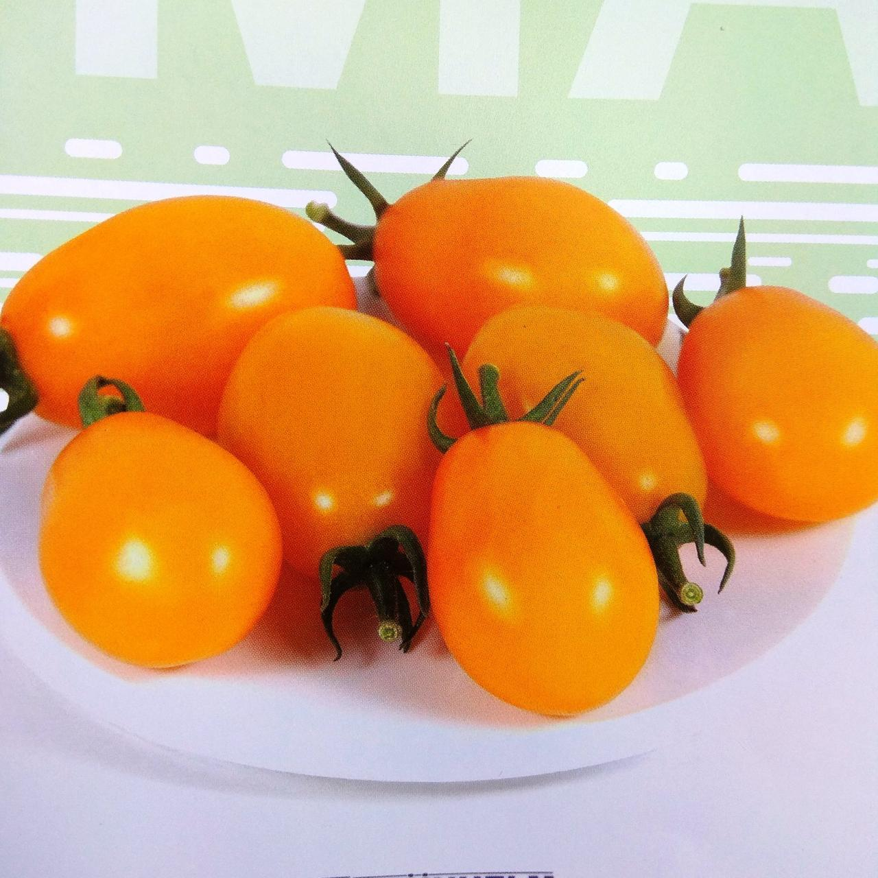 Семена томата KS-3690 F1 (250 сем.) Kitano