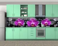 Кухонный фартук Орхидея фуксия и черные камни, Самоклеящаяся стеновая панель для кухни, Цветы, серый