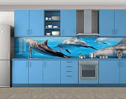 Кухонный фартук Веселые дельфины, Самоклеящаяся стеновая панель для кухни, Животный мир, голубой