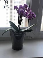 Вазон для орхидей Ника 13х15 см
