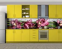 Кухонный фартук Бордовые орхидеи, Кухонный фартук с фотопечатью, Цветы, зеленый, фото 1