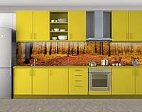 Кухонный фартук Пожелтевший лес, Наклейка на кухонный фартук, Природа, бежевый, фото 1