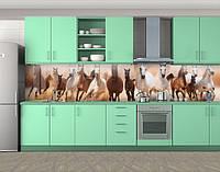Кухонный фартук Табун лошадей, кони, Самоклеящаяся скинали с фотопечатью, Животный мир, коричневый, фото 1
