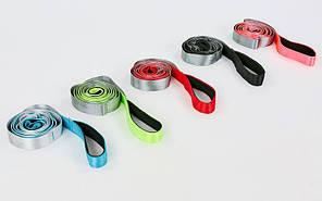 Лента для растяжки FI-8369 Stretch Strap (10 петель, полиэстер, р-р 4x220см, цвета в ассортименте)Z
