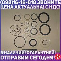⭐⭐⭐⭐⭐ Ремкомплект гидроцилиндра ЦС-125 (силовой) (К-701) (Руслан-Комплект)  Р/К-409