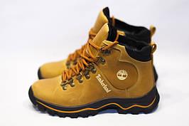 Зимние ботинки  (на меху) женские Timberland 13057