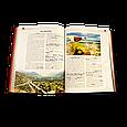 """Книга в кожаном переплете """"Книга о вине. Подробно о вине для гурманов и ценителей"""", фото 4"""