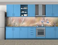 Кухонный фартук Мотыльки на колоске, Кухонный фартук с фотопечатью, Животный мир, бабочки, бежевый