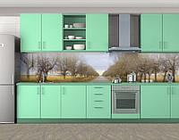 Кухонный фартук Алея деревьев в поле, Пленка для кухонного фартука с фотопечатью, Природа, зеленый