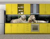 Кухонный фартук Пара снежных барсов, Самоклеящаяся стеновая панель для кухни, Животный мир, бежевый