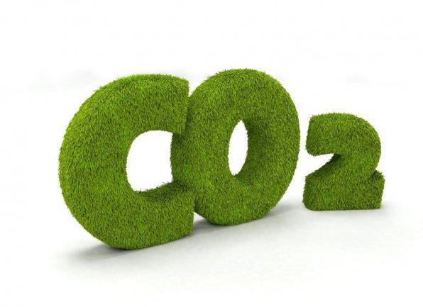 Экстракт СО2 Календулы, 5 грамм