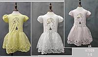 Платье на девочек оптом, Setty Koop , 1-5 рр