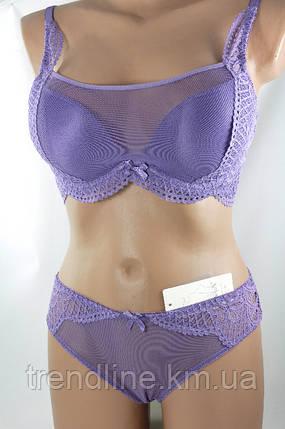 Комплект В Weiyesi № 8476-2 Фиолетовый, фото 2