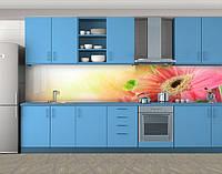 Кухонный фартук Герберы в солнечных лучах, Самоклеящаяся скинали с фотопечатью, Цветы, розовый