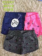 Трикотажные шорты для девочек S&D 98-128 p.p.