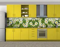 Кухонный фартук Ромашки, Фотопечать кухонного фартука на самоклейке, Цветы, зеленый, 600*3000 мм