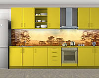 Кухонный фартук Дымка в Саванне, Стеновая панель для кухни с фотопечатью, Природа, бежевый