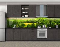 Кухонный фартук Сочные поля и деревья, Стеновая панель с фотопечатью, Природа, зеленый, фото 1