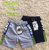Трикотажные шорты для мальчиков S&D оптом, 1-5 лет. Артикул: CH5601