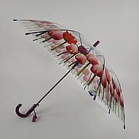 """Прозрачный зонт-трость с изображением разных тюльпанов, полуавтомат от фирмы """"Feeling rain"""" - 211-3"""