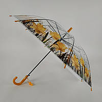 """Прозрачный зонт-трость с изображением нарцысов, полуавтомат от фирмы """"Feeling rain"""" - 211-1"""