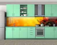 Кухонный фартук Подсолнух в солнечных бликах, Самоклеящаяся стеновая панель для кухни, Цветы, оранжевый