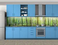 Кухонный фартук Весенний лес, Защитная пленка на кухонный фартук с фотопечатью, Природа, зеленый