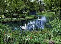 """Фотообои бумажные на стену, 134х194 см """"Лебеди в парке"""", фотообои готовые, фотообои природа, 8 листов"""