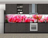 Кухонный фартук Полные пышные тюльпаны, Стеновая панель с фотопечатью, Цветы, розовый, 600*3000 мм, фото 1