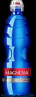 Упаковка минеральной лечебно-столовой негазированной воды Magnesia Go 0.75 л x 6 шт