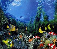 """Фотообои бумажные на стену, 201х242 см """"Подводное царство"""", фотообои готовые, фотообои природа, 15 листов"""