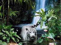 """Фотообои бумажные на стену, 242х201 см """"Тропическая сказка"""", фотообои готовые, фотообои природа, 15 листов"""