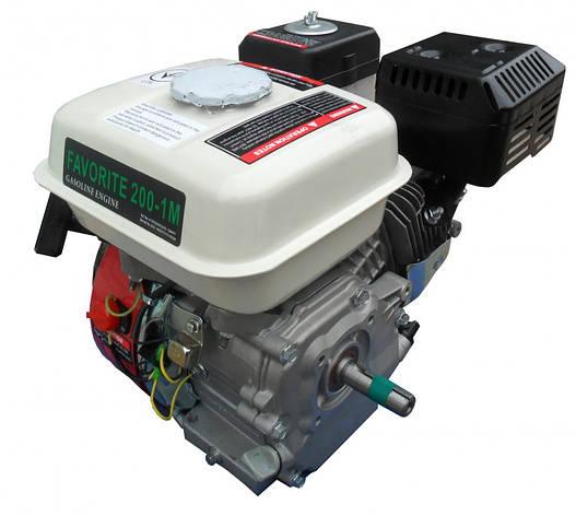 Двигатель бензиновый Iron Angel favoritr 200-1M, фото 2