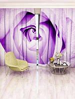 Фотоштора Walldeco Фиолетовая роза (3095r_1_1)