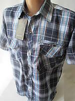 Купить мужские рубашки с коротким рукавом.