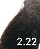 2/22 Крем-краска для волос RLINE 100 мл