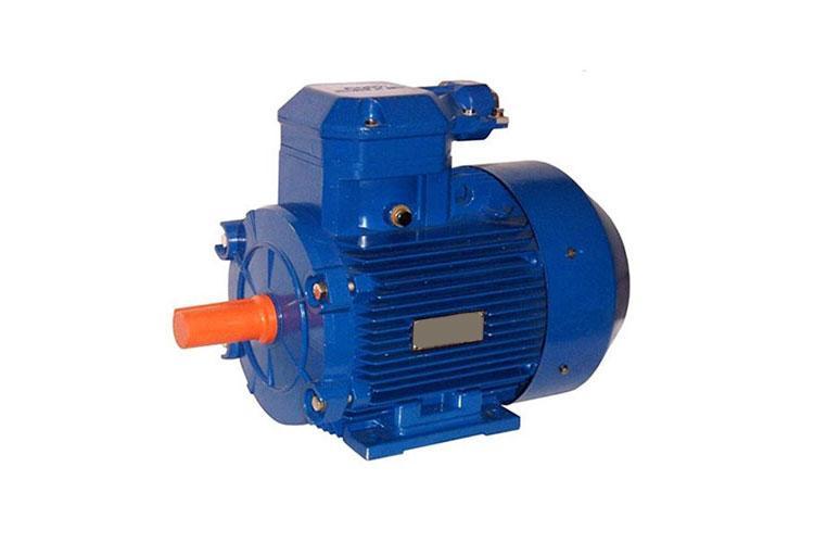 Двигатель АИМ-М80В2ф 3000 об/мин