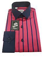 Рубашка мужская  S 122.1 2689 V8, фото 1