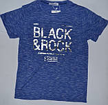 Стильная футболка для мальчика,  Sincere 6609, фото 4