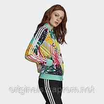 Женская олимпийка Adidas Tropicalage Superstar Graphic FH7991  , фото 3