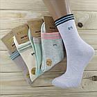 Носки женские высокие деми UYUT women cotton socks хлопок 36-41р.бесшовные с двойной пяткой ассорти НЖД-021245, фото 5