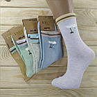 Носки женские высокие деми UYUT women cotton socks хлопок 36-41р.бесшовные с двойной пяткой ассорти НЖД-021248, фото 5